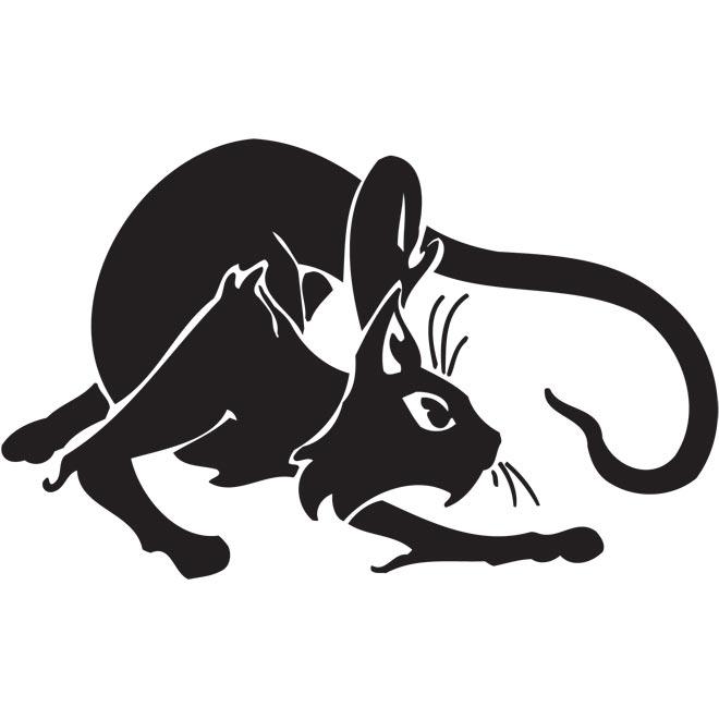 Черно-белые рисунок кота